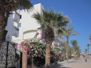 Курортная недвижимость в Египте